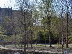 Forår i Gellerupparken